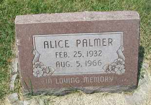 PALMER, ALICE - DuPage County, Illinois | ALICE PALMER - Illinois Gravestone Photos