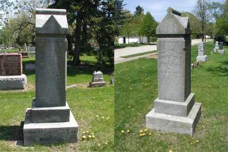 RANNEY, DAVID - DuPage County, Illinois   DAVID RANNEY - Illinois Gravestone Photos