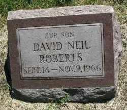 ROBERTS, DAVID NEIL - DuPage County, Illinois | DAVID NEIL ROBERTS - Illinois Gravestone Photos