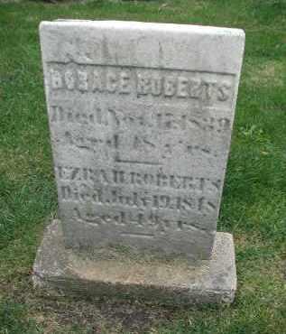 ROBERTS, HORACE - DuPage County, Illinois | HORACE ROBERTS - Illinois Gravestone Photos