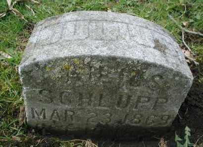 SCHLUPP, JULIUS - DuPage County, Illinois | JULIUS SCHLUPP - Illinois Gravestone Photos