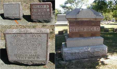 STIEFBOLD, CHARLES IRVIN - DuPage County, Illinois | CHARLES IRVIN STIEFBOLD - Illinois Gravestone Photos