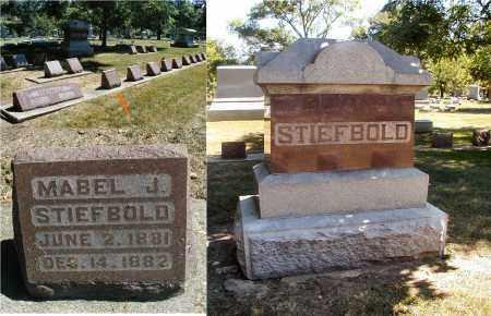 STIEFBOLD, MABEL J. - DuPage County, Illinois | MABEL J. STIEFBOLD - Illinois Gravestone Photos