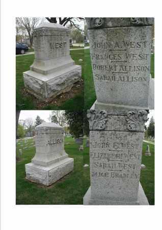 BRADLEY, ALICE - DuPage County, Illinois | ALICE BRADLEY - Illinois Gravestone Photos
