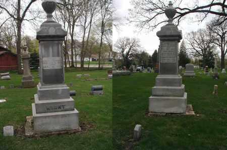 WIANT, DORCAS - DuPage County, Illinois   DORCAS WIANT - Illinois Gravestone Photos