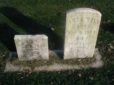 WOLF, UNKNOWN - DuPage County, Illinois   UNKNOWN WOLF - Illinois Gravestone Photos