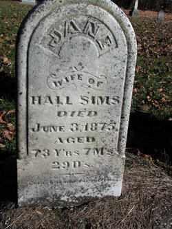 SIMS, JANE - Edgar County, Illinois | JANE SIMS - Illinois Gravestone Photos