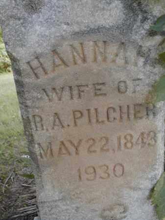 TURNER PILCHER, HANNAH - Effingham County, Illinois | HANNAH TURNER PILCHER - Illinois Gravestone Photos