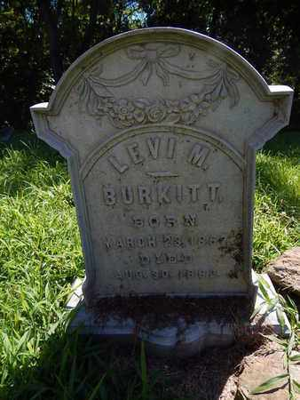 BURKITT, LEVI M - Franklin County, Illinois | LEVI M BURKITT - Illinois Gravestone Photos