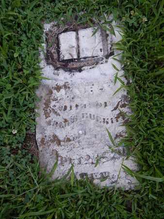 BURKITT, MARY - Franklin County, Illinois   MARY BURKITT - Illinois Gravestone Photos