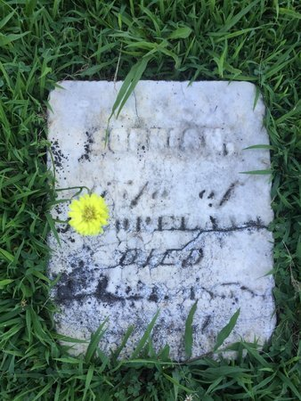 COPELAND, SOPHIAH - Franklin County, Illinois   SOPHIAH COPELAND - Illinois Gravestone Photos