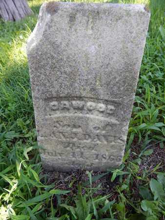 DAVIS, CAWOOD - Franklin County, Illinois | CAWOOD DAVIS - Illinois Gravestone Photos