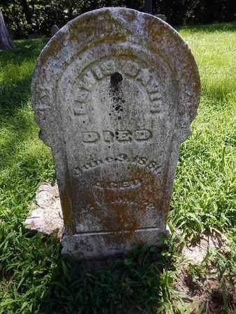 DAVIS, LEWIS - Franklin County, Illinois | LEWIS DAVIS - Illinois Gravestone Photos