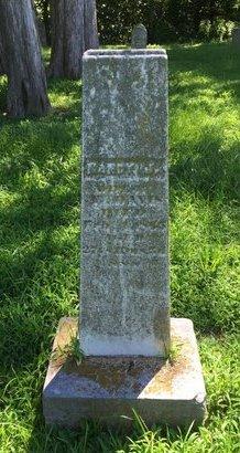 DAVIS, NANCY J - Franklin County, Illinois | NANCY J DAVIS - Illinois Gravestone Photos