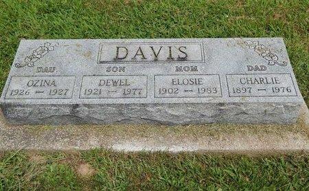 DAVIS, OZINA - Franklin County, Illinois | OZINA DAVIS - Illinois Gravestone Photos