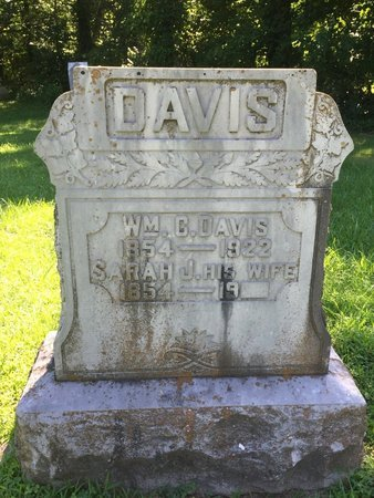 DAVIS, WILLIAM C - Franklin County, Illinois | WILLIAM C DAVIS - Illinois Gravestone Photos