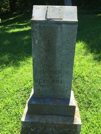 DAVIS, WARREN M - Franklin County, Illinois | WARREN M DAVIS - Illinois Gravestone Photos