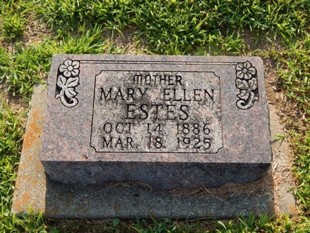 ESTES, MARY ELLEN - Franklin County, Illinois | MARY ELLEN ESTES - Illinois Gravestone Photos