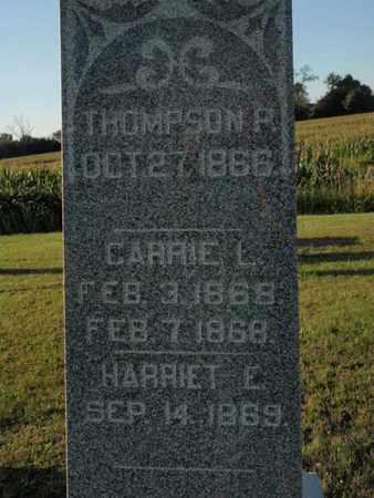 ESTES, THOMPSON P - Franklin County, Illinois   THOMPSON P ESTES - Illinois Gravestone Photos