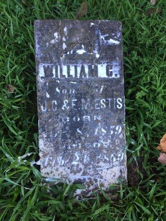 ESTIS, WILLIAM C - Franklin County, Illinois | WILLIAM C ESTIS - Illinois Gravestone Photos