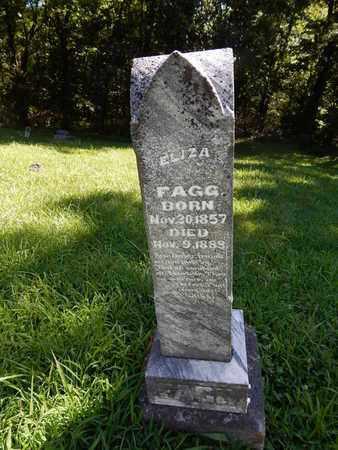 FAGG, ELIZA - Franklin County, Illinois | ELIZA FAGG - Illinois Gravestone Photos