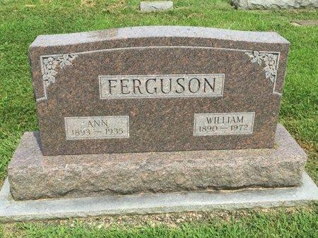 FERGUSON, ANN - Franklin County, Illinois | ANN FERGUSON - Illinois Gravestone Photos
