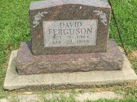 FERGUSON, DAVID - Franklin County, Illinois | DAVID FERGUSON - Illinois Gravestone Photos