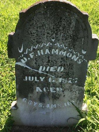 HAMMONS, D F - Franklin County, Illinois | D F HAMMONS - Illinois Gravestone Photos
