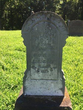 DAVIS HAMMONS, SARAH HELEN - Franklin County, Illinois | SARAH HELEN DAVIS HAMMONS - Illinois Gravestone Photos