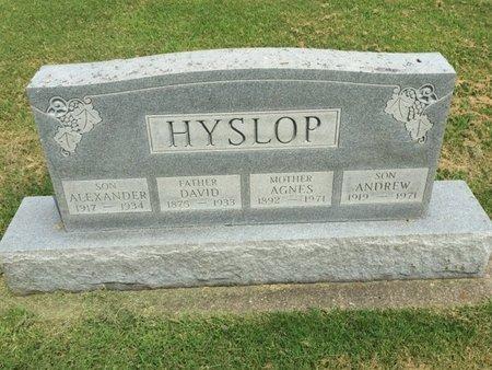 HYSLOP, DAVID - Franklin County, Illinois | DAVID HYSLOP - Illinois Gravestone Photos