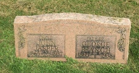 BRANCH, GEORGE - Franklin County, Illinois | GEORGE BRANCH - Illinois Gravestone Photos
