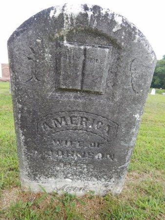 JOHNSON, AMERICA - Franklin County, Illinois | AMERICA JOHNSON - Illinois Gravestone Photos