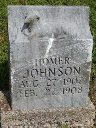 JOHNSON, HOMER - Franklin County, Illinois   HOMER JOHNSON - Illinois Gravestone Photos