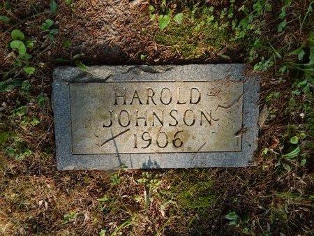 JOHNSON, HAROLD - Franklin County, Illinois | HAROLD JOHNSON - Illinois Gravestone Photos