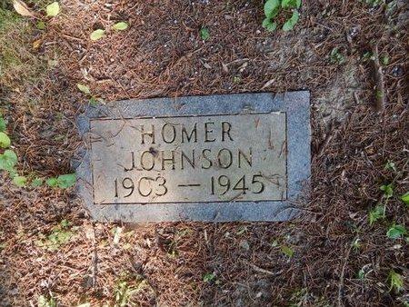 JOHNSON, HOMER - Franklin County, Illinois | HOMER JOHNSON - Illinois Gravestone Photos