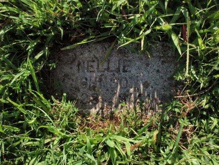 JOHNSON, NELLIE - Franklin County, Illinois   NELLIE JOHNSON - Illinois Gravestone Photos