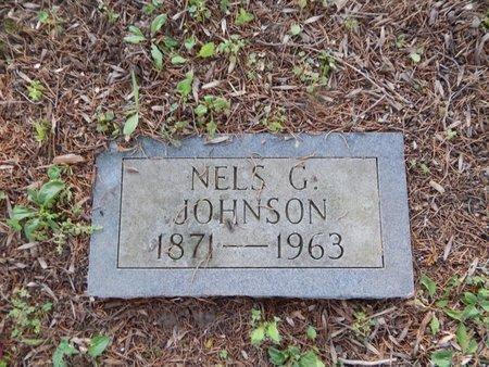 JOHNSON, NELS G - Franklin County, Illinois | NELS G JOHNSON - Illinois Gravestone Photos