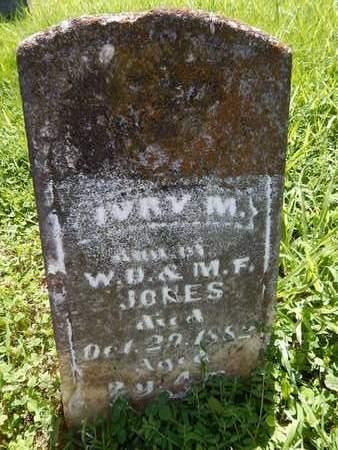 JONES, IVRY M - Franklin County, Illinois | IVRY M JONES - Illinois Gravestone Photos