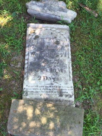 MCGLASSON, BARNETT - Franklin County, Illinois | BARNETT MCGLASSON - Illinois Gravestone Photos
