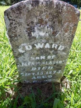 MCGLASSON, EDWARD - Franklin County, Illinois | EDWARD MCGLASSON - Illinois Gravestone Photos