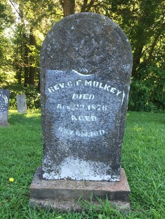 MULKEY, C F (REVEREND) - Franklin County, Illinois | C F (REVEREND) MULKEY - Illinois Gravestone Photos
