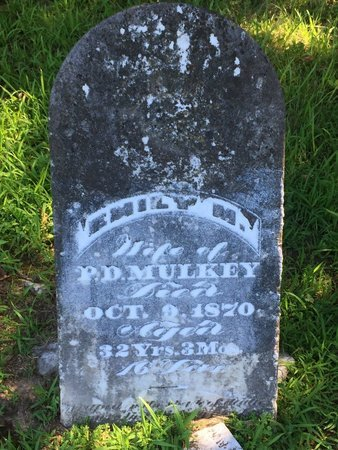 MULKEY, EMILY M - Franklin County, Illinois | EMILY M MULKEY - Illinois Gravestone Photos