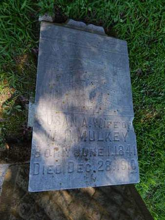THURSTON MULKEY, SUSAN A - Franklin County, Illinois | SUSAN A THURSTON MULKEY - Illinois Gravestone Photos