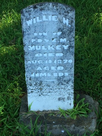 MULKEY, WILLIE H - Franklin County, Illinois | WILLIE H MULKEY - Illinois Gravestone Photos