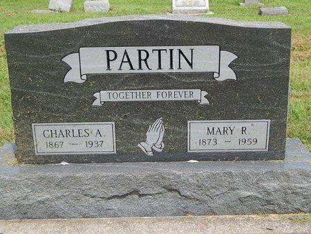 PARTIN, MARY R - Franklin County, Illinois | MARY R PARTIN - Illinois Gravestone Photos