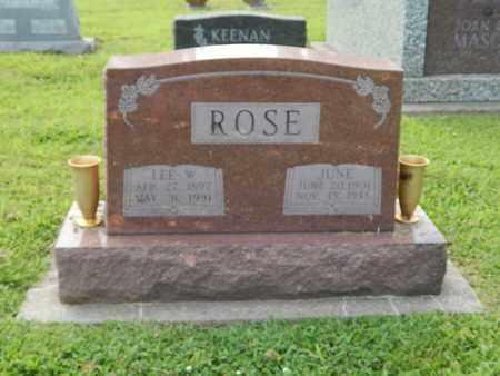 ROSE, LEE W - Franklin County, Illinois | LEE W ROSE - Illinois Gravestone Photos