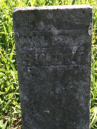 SNIDER, SON - Franklin County, Illinois   SON SNIDER - Illinois Gravestone Photos