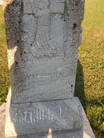 STANDERFER, WILBURN - Franklin County, Illinois | WILBURN STANDERFER - Illinois Gravestone Photos