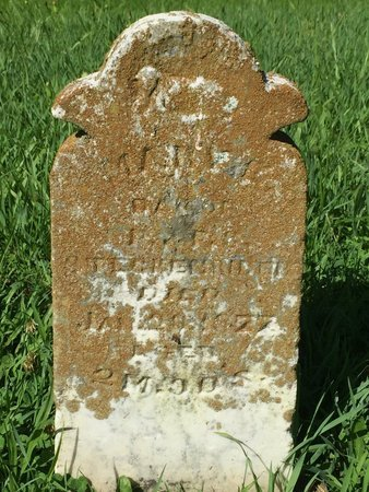 STECHENRIDER, MARY E - Franklin County, Illinois | MARY E STECHENRIDER - Illinois Gravestone Photos