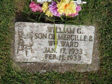 WARD, WILLIAM G - Franklin County, Illinois   WILLIAM G WARD - Illinois Gravestone Photos